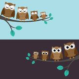 Family of owls. Sitting on a branch. Two variations Royalty Free Stock Image
