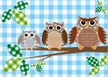 Family of owls Royalty Free Stock Image