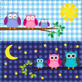 Family of owls Royalty Free Stock Photo