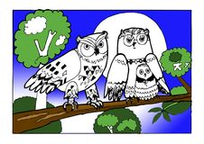 Family owls, colouring book vector illustration