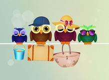 Family of owls goes on vacation Stock Images