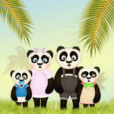 Family of panda in the jungle Royalty Free Stock Photo
