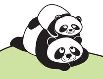 Family panda mom and child Stock Image