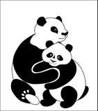 Family of pandas Royalty Free Stock Image