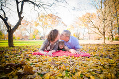 Family in the Park Royalty Free Stock Photos