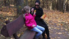 Family in park on a bench. In autumn day stock footage