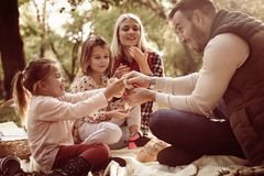 Family in park having picnic. Close up stock image