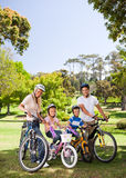 Family in the park with their bikes Stock Photography