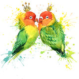 Family Parrot T-shirt graphics. Parrot illustration with splash watercolor textured  background. unusual illustration watercolor P Stock Photo