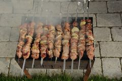 Family party with favorite grilled food. Barbecue stock images