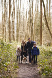 Family with pet dog walking in a wood, vertical Stock Photography