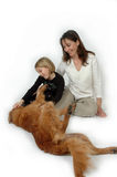 Family Pets. Woman and child on white background playing with a dog. Golden Retriever on it's side playing with its family royalty free stock photo