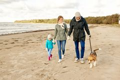 Happy family walking with beagle dog on beach. Family, pets and people concept - happy mother, father and little daughter walking with beagle dog on leash on stock photo