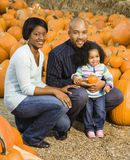 Family picking pumpkin. Stock Photography