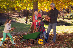 Family picking up autumn leaves Stock Images