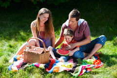 Family picnic. Young family having picnic on summer sunny day Stock Photos