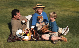Family picnic. Family having picnic outside in the park Royalty Free Stock Image