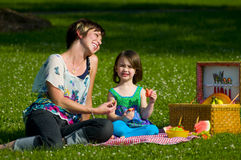 Family picnic royalty free stock photo