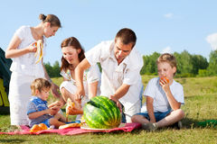Family picnic Royalty Free Stock Images
