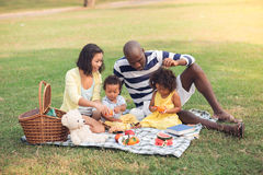 Free Family Picnic Stock Photography - 38714652