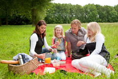 Family picnic. Pretty young family on an outdoors picnic in the field Stock Images