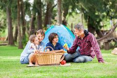 Family With Picnic Basket At Campsite. Happy family of four with picnic basket at campsite stock photo