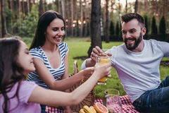 Family on picnic. Cheers! Happy family on a picnic drinking orange juice and smiling royalty free stock photos