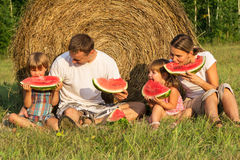 Family on picnic in the field Royalty Free Stock Photos
