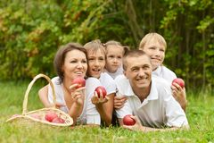 Family on a picnic Stock Photos