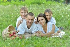 Family on a picnic Stock Image