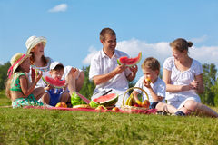Free Family Picnic In Park Royalty Free Stock Photo - 23759305