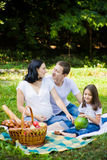 Family picnic at a meadow Stock Photos