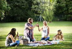 Family Picnic Outdoors Togetherness Relaxation Cheers Concept Stock Photography