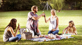 Family Picnic Outdoors Togetherness Relaxation Cheers Concept Royalty Free Stock Photography