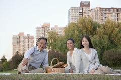 Family picnic in the park, portrait Stock Images