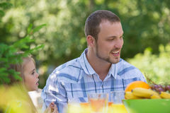 Family on picnic at summer park or backyard stock photography