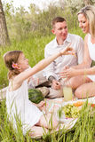 Family picnic stock image
