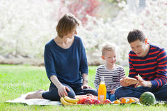 Family picnic. Family of three at the picnic in the park at spring royalty free stock image