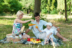 Family picnick on the outdoors. Royalty Free Stock Photo
