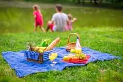 Family picnicking Royalty Free Stock Photo
