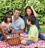 Family picnicking in the garden Royalty Free Stock Photography