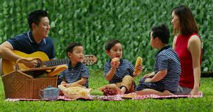 Family picnicking on the garden stock video footage