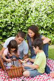 Family Picnicking In The Garden Stock Photography