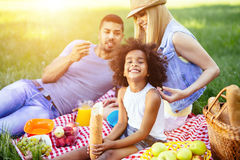Family picnicking outdoors stock image