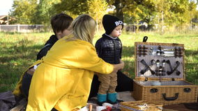 Family picnicking in the park. stock footage