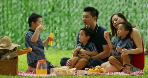 Family picnicking and playing soap bubbles stock video footage