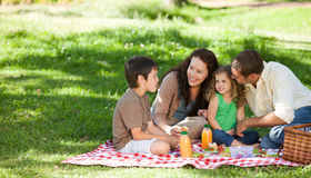 Family  picnicking together. Young joyful family picnicking together Stock Photos