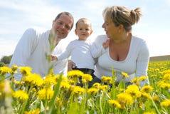 Family Picture in Dandelion field Stock Image