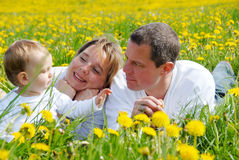 Family Picture in Dandelion field Stock Photos