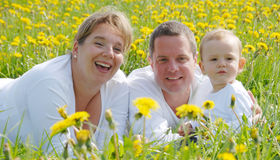 Family Picture in Dandelion field Royalty Free Stock Photography